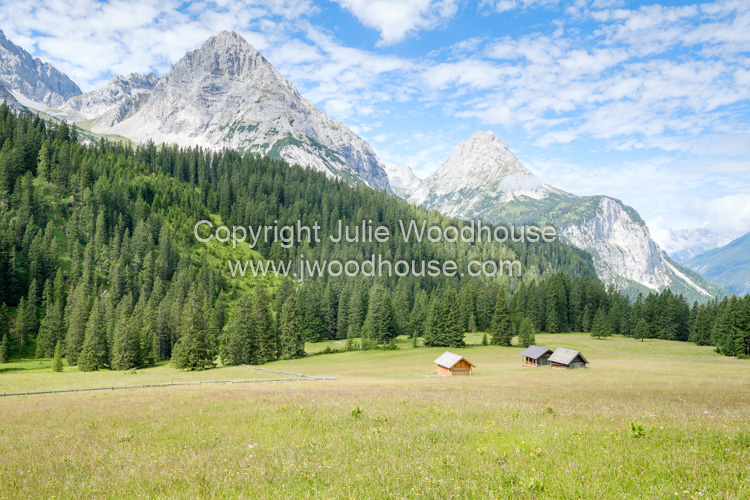 photo showing Mountains And Pasture By Ehrwalder Alm, Ehrwald, Tyrol, Austria