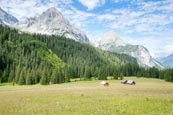 Thumbnail image of mountains and pasture by Ehrwalder Alm, Ehrwald, Tyrol, Austria