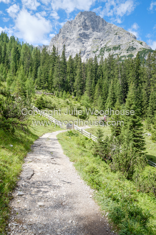 photo showing Seebenalm Footpath To The Seebensee With The Sonnenspitze Mountain Peak, Ehrwald, Tyrol, Austria