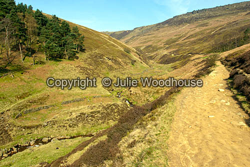photo showing Grindsbrook Path To Kinder, Derbyshire