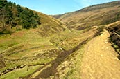 Thumbnail image of Grindsbrook path to Kinder, Derbyshire