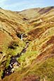 Thumbnail image of Grindsbrook path to Kinder, Derbyshire, England