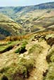 Thumbnail image of Kinder, Derbyshire, England