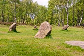 Thumbnail image of Nine Ladies stone circle, Stanton Moor, Derbyshire, England