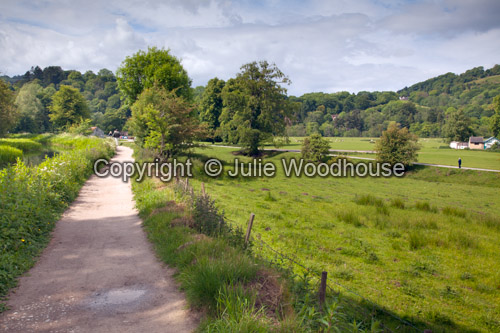 photo showing Cromford Canal And Meadows, Derbyshire, England