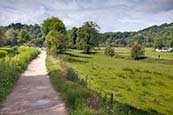 Thumbnail image of Cromford Canal and meadows, Derbyshire, England