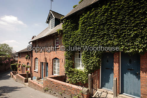photo showing Cottages In Gwynne Street, Hereford II