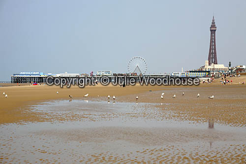 photo showing Blackpool Beach, Central Pier & Tower