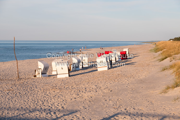 photo showing Beach Chairs On The Beach Of Prerow, Baltic Sea, Darss, Mecklenburg-Vorpommern, Germany