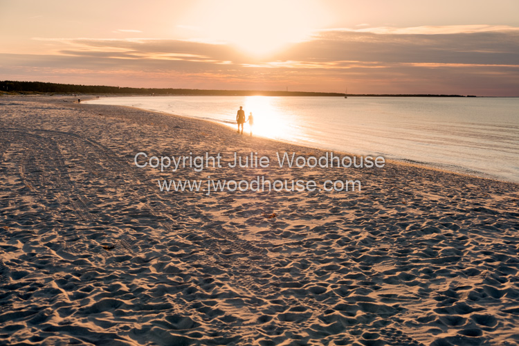 photo showing Beach In Prerow, Darss, Mecklenburg-Vorpommern, Germany