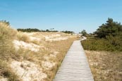 Thumbnail image of boardwalk at Darßer Ort near Prerow,, Darss, Mecklenburg-Vorpommern, Germany