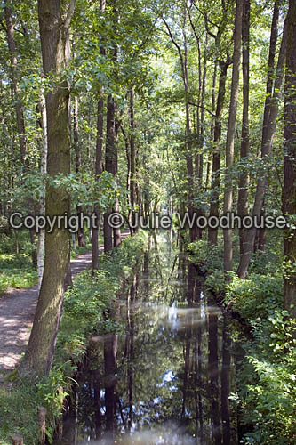 photo showing Rollkanal Near Wotschofska, Luebbenau, Spreewald, Brandenburg, Germany