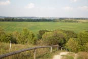 Thumbnail image of Path up to the Kleiner Rummelsberg and view over the Parsteiner See, Barnim / Uckermark, Brandenburg