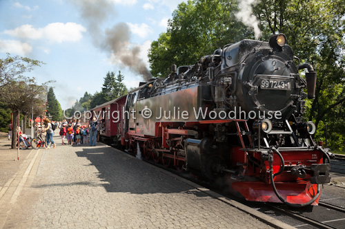 photo showing Steam Train At Drei Annen Hohne With Tourists Boarding, Saxony Anhalt, Germany