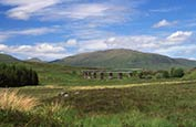 Thumbnail image of Towards Sgor Gaithie, Rannoch Moor, Scotland