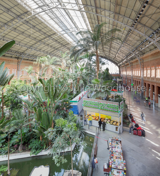 photo showing Tropical greenhouse at Atocha Train station, Madrid, Spain