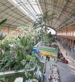 Tropical greenhouse at Atocha Train station, Madrid, Spain
