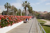 Thumbnail image of Puente de las flores - Flower Bridge over the park Jardin del Turia, Valencia, Spain