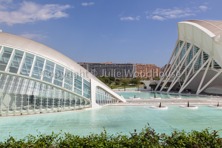 photo showing The City Of Arts And Sciences, View From The Umbracle With The Hemisferic And Science Museum Prince